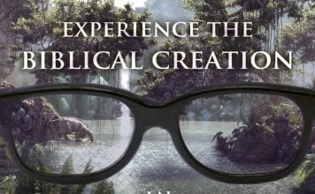 Genesis - Biblical creation in real 3D